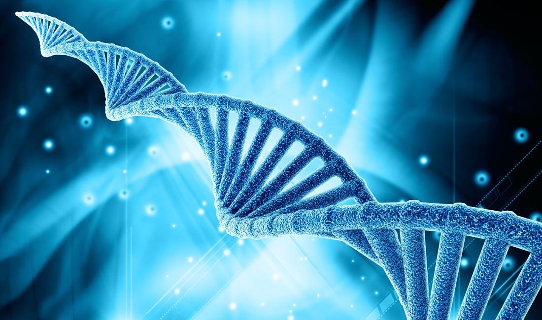 Test Genetico Preimpianto per la rilevazione di aneuploidie
