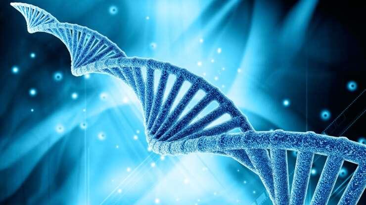 Предимплантационное генетическое тестирование
